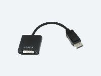 DisplayPort-Male to DVI-Female Adapter